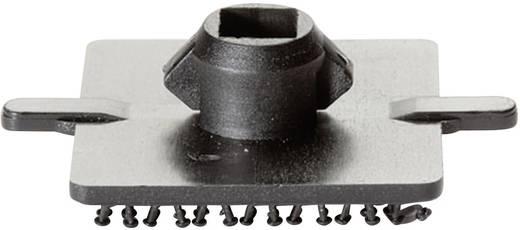 Klettquadrat zum Anschrauben Haftteil (L x B) 25 mm x 25 mm Schwarz Binder Band 76763 1 St.