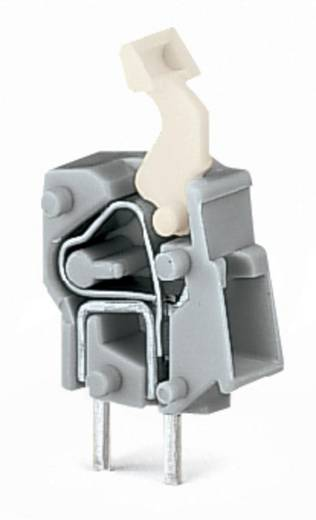 Federkraftklemmblock 2.50 mm² Polzahl 1 257-843 WAGO Licht-Grau 500 St.