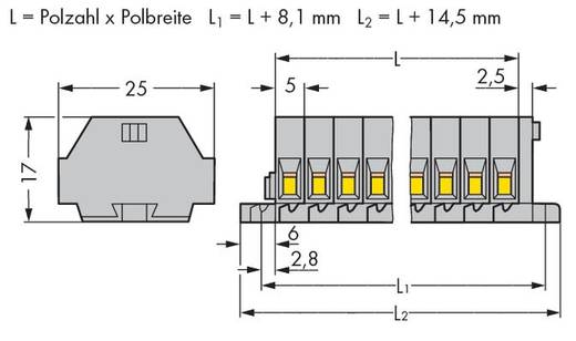 Klemmenleiste 5 mm Zugfeder Belegung: L Grau WAGO 260-105 100 St.