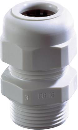 Presse-étoupe Wiska SKV PG 21 RAL 9005 10066196 PG21 Polyamide noir 1 pc(s)
