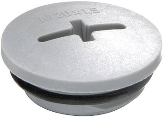 Verschlussschraube M32 Polyamid Silber Grau Ral 7001 Wiska Evsg