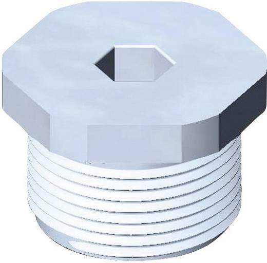 Verschlussschraube M25 Polyamid Licht-Grau (RAL 7035) Wiska EVSGS 25 1 St.