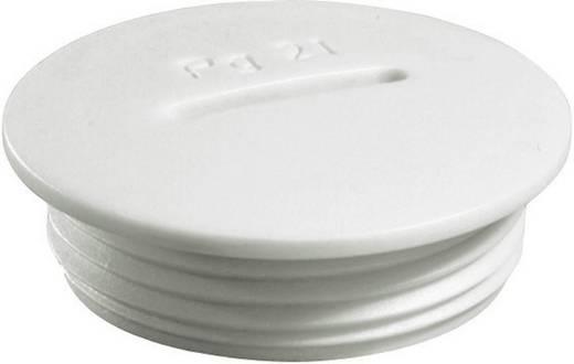 Verschlussschraube PG7 Polyamid Licht-Grau (RAL 7035) Wiska VSG 7 1 St.