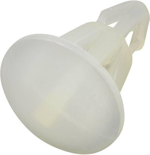Platinenhalter Polyamid Abstandsmaß 5 mm KSS RS-5S 1 St.