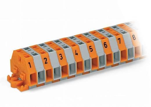 Klemmenleiste 6 mm Zugfeder Belegung: L Grau WAGO 260-410 25 St.