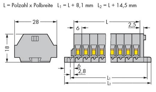 Klemmenleiste 6 mm Zugfeder Belegung: L Grau WAGO 261-109 50 St.