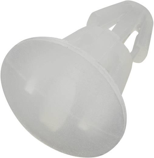Platinenhalter Polyamid Abstandsmaß 5.6 mm KSS RS-6B 1 St.