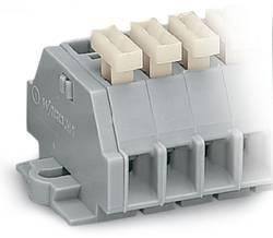 Barrette à bornes WAGO 261-105/331-000 6 mm ressort de traction Affectation des prises: L gris 200 pc(s)