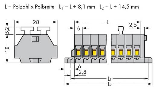 WAGO 261-110/341-000 Klemmenleiste 6 mm Zugfeder Belegung: L Grau 25 St.