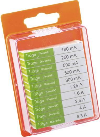 ESKA 122850 Feinsicherung-Sortiment (Ø x L) 5 mm x 20 mm Träge -T- Inhalt 100 St.