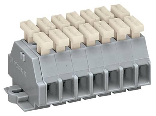 Klemmenleiste 6 mm Zugfeder Belegung: L Grau WAGO 261-107/341-000 50 St.