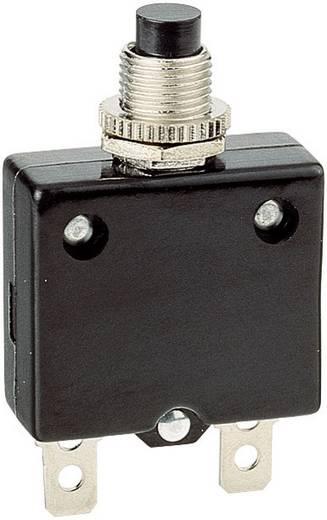 Schutzschalter thermisch 250 V/AC 10 A 1 St.