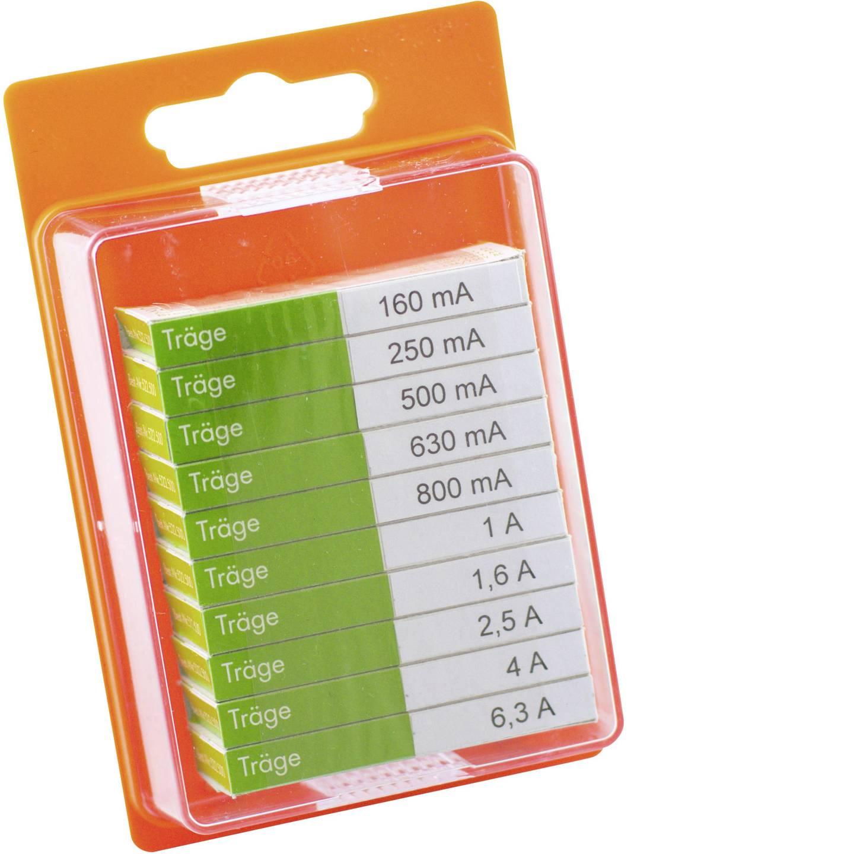 ESKA 12208 Feinsicherung-Sortiment (Ø x L) 5 mm x 20 mm Träge -T- Inhalt 100 St.