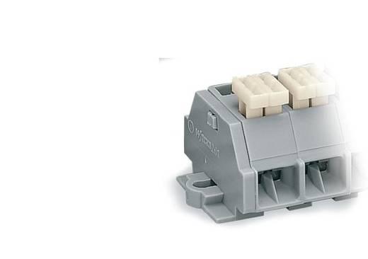 Klemmenleiste 10 mm Zugfeder Belegung: L Grau WAGO 261-202/332-000 100 St.