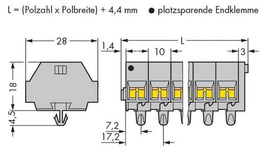WAGO 261-258 Klemmenleiste 10 mm Zugfeder Belegung: L Grau 50 St.