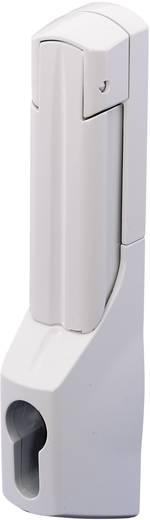 Komfortgriff für Profilhalbzylinder Grau (RAL 7035) Rittal SZ 2537000 1 St.