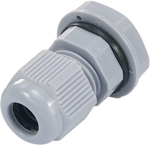 Kabelverschraubung PG7 Polyamid Silber-Grau (RAL 7001) KSS EGRWW7GY3 1 St.