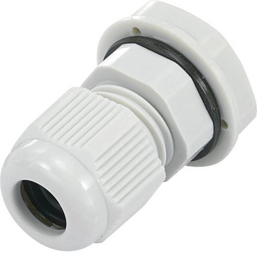 Kabelverschraubung PG16 Polyamid Licht-Grau (RAL 7035) KSS EGRWW16GY4 1 St.