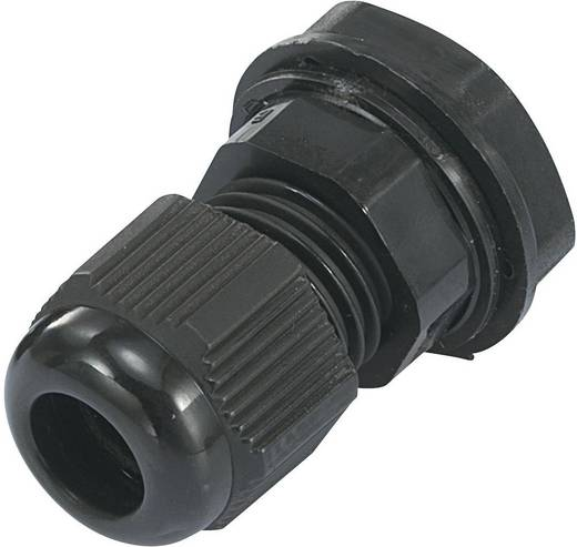 Kabelverschraubung PG21 Polyamid Schwarz (RAL 9005) KSS EGRWW21 1 St.