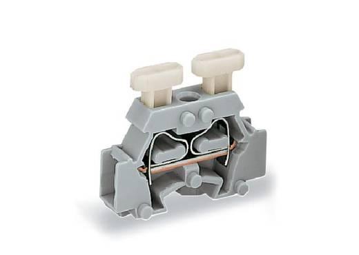 Einzelklemme 6 mm Zugfeder Belegung: L Grau WAGO 261-411/341-000 200 St.