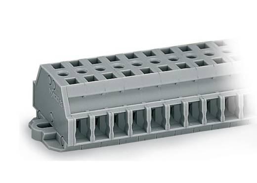 Klemmenleiste 6 mm Zugfeder Belegung: L Grau WAGO 261-422 100 St.