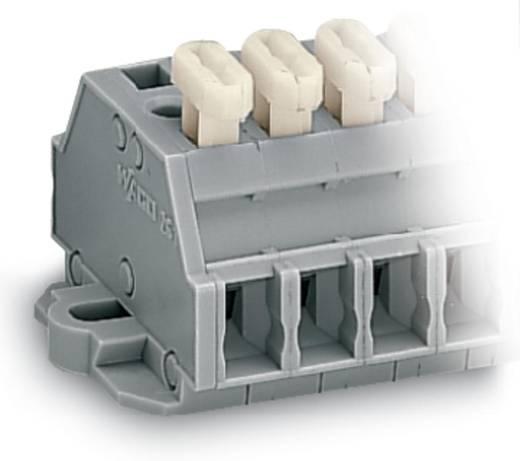 Klemmenleiste 6 mm Zugfeder Belegung: L Grau WAGO 261-422/331-000 100 St.