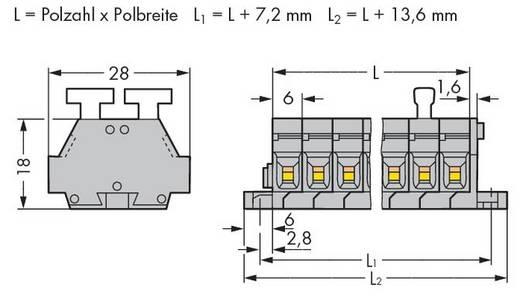 Klemmenleiste 6 mm Zugfeder Belegung: L Grau WAGO 261-422/341-000 100 St.