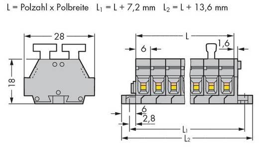 Klemmenleiste 6 mm Zugfeder Belegung: L Grau WAGO 261-428/341-000 50 St.