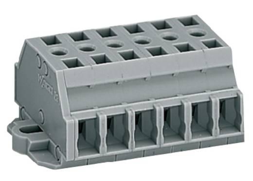 Klemmenleiste 6 mm Zugfeder Belegung: L Grau WAGO 261-426 50 St.