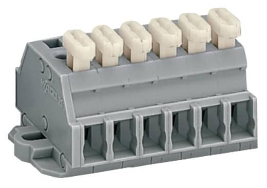 Klemmenleiste 6 mm Zugfeder Belegung: L Grau WAGO 261-426/331-000 50 St.