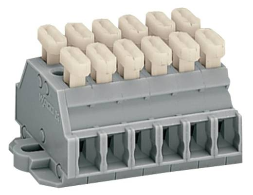 WAGO 261-426/341-000 Klemmenleiste 6 mm Zugfeder Belegung: L Grau 50 St.