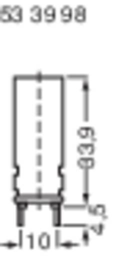 Sicherungshalter Passend für Feinsicherung 5 x 20 mm 10 A 250 V/AC 1 St.