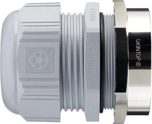 Gegenmutter mit Erdungskrallen M40 Messing Messing LappKabel SKINTOP® BRUSH ADD-ON M40 1 St.