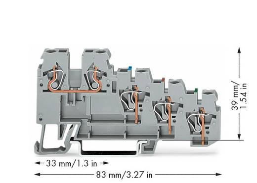 Initiatorenklemme 5 mm Zugfeder Belegung: L Grau WAGO 270-570 50 St.