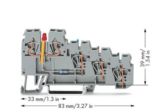 Initiatorenklemme 5 mm Zugfeder Belegung: L Grau WAGO 270-570/281-434 50 St.