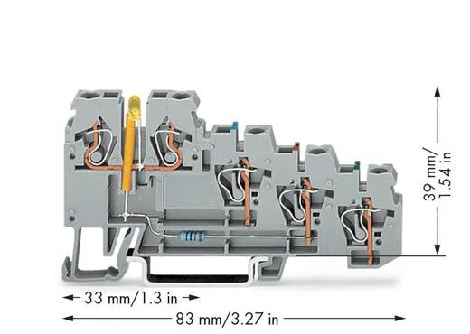 Initiatorenklemme 5 mm Zugfeder Belegung: L Grau WAGO 270-570/281-507 50 St.