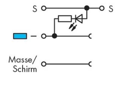 Aktorenklemme 5 mm Zugfeder Belegung: L Grau WAGO 270-572/281-434 50 St.