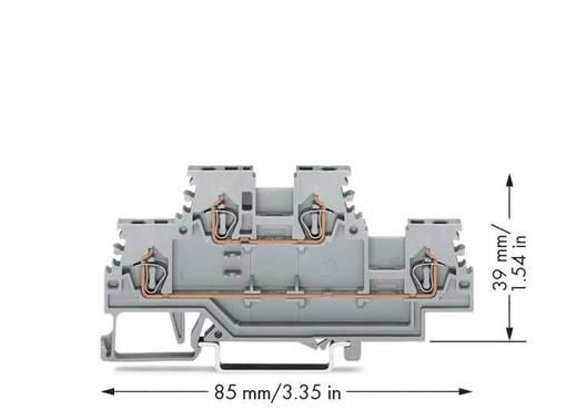 WAGO 279-501 Doppelstock-Durchgangsklemme 4 mm Zugfeder Belegung: L, L Grau 50 St.