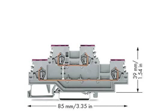 Doppelstock-Durchgangsklemme 4 mm Zugfeder Belegung: L Grau WAGO 279-508 50 St.