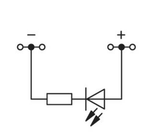 LED-Klemme 4 mm Zugfeder Belegung: L Grau WAGO 279-624/281-413 100 St.