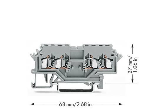 Durchgangsklemme 4 mm Zugfeder Belegung: L Grau WAGO 279-626 100 St.
