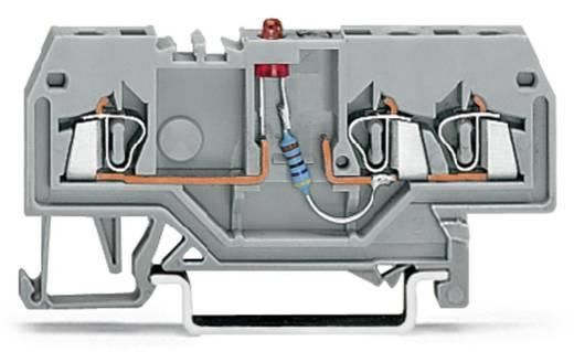 LED-Klemme 4 mm Zugfeder Belegung: L Grau WAGO 279-674/281-413 100 St.