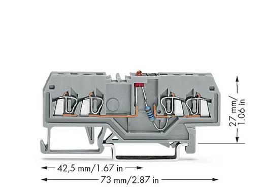 LED-Klemme 4 mm Zugfeder Belegung: L Grau WAGO 279-809/281-434 100 St.