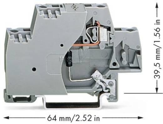 Einzelklemme 10 mm Zugfeder Belegung: L Grau WAGO 280-502/281-589 50 St.