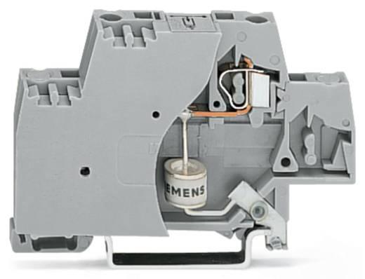 Einzelklemme 10 mm Zugfeder Belegung: L Grau WAGO 280-503/281-581 50 St.
