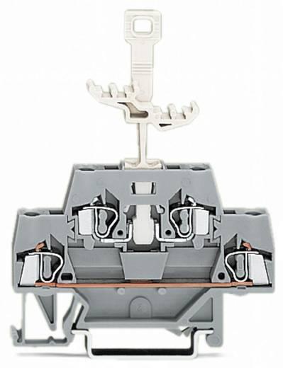 Doppelstock-Durchgangsklemme 5 mm Zugfeder Belegung: L Grau WAGO 280-521 50 St.