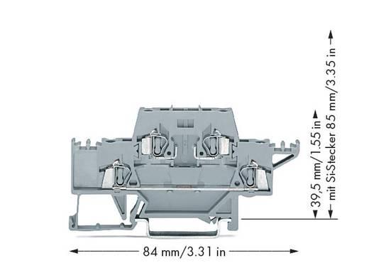 Doppelstock-Durchgangsklemme 5 mm Zugfeder Belegung: L Grau WAGO 280-528 50 St.