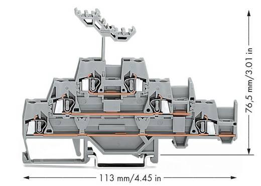 WAGO 280-550 Dreistock-Durchgangsklemme 5 mm Zugfeder Belegung: L Grau 40 St.