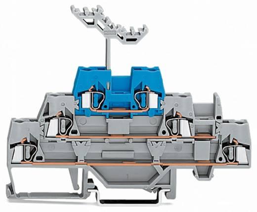 Dreistock-Durchgangsklemme 5 mm Zugfeder Grau, Blau WAGO 280-552 40 St.