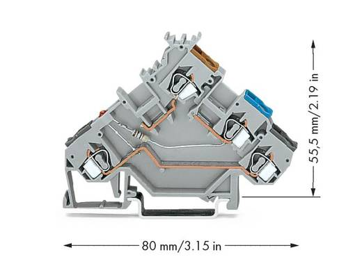 Initiatorenklemme 5 mm Zugfeder Belegung: L Grau WAGO 280-560/281-434 50 St.